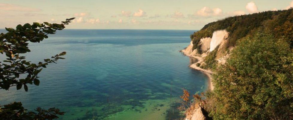 changement-climatique-impact-foret-Méditerranéenne-2017