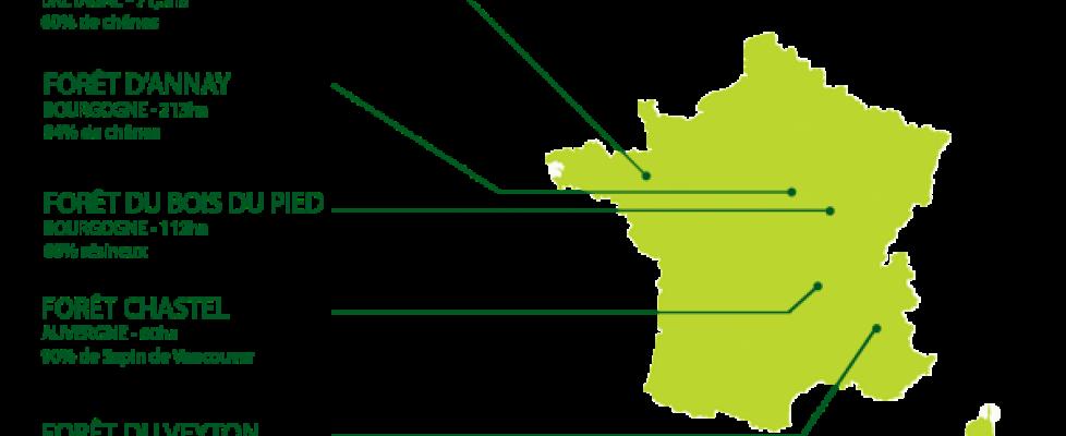 groupements fonciers forestiers Vatel et Foncière Forestière