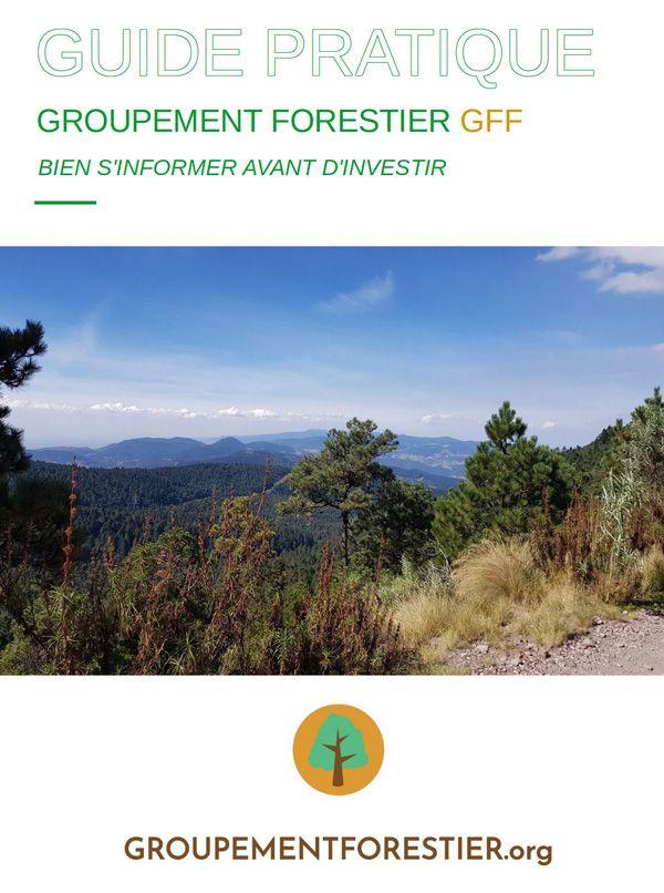 Guide-des-Groupements-Forestiers-GFF-PDF-gratuit