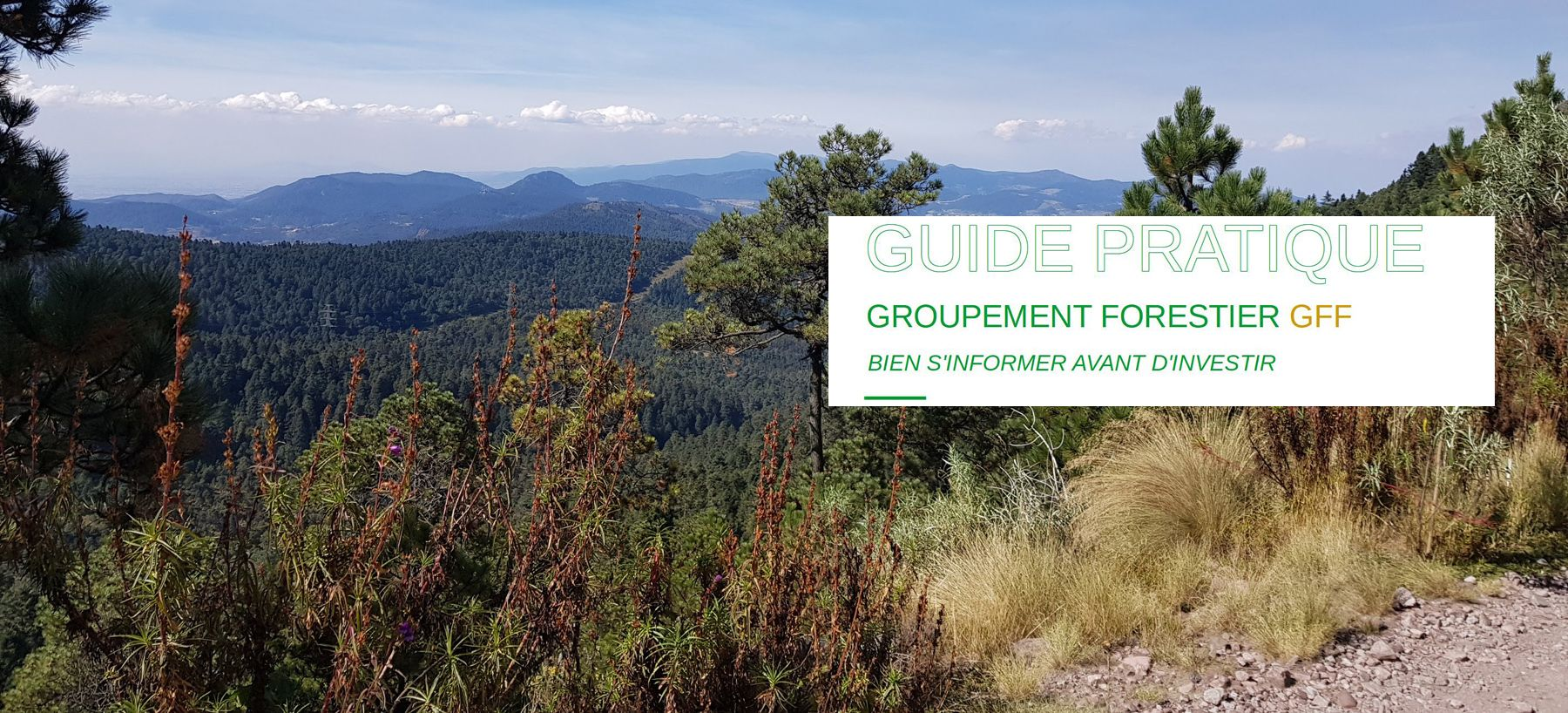 Guide-pdf-des-groupements-forestiers GFF 1