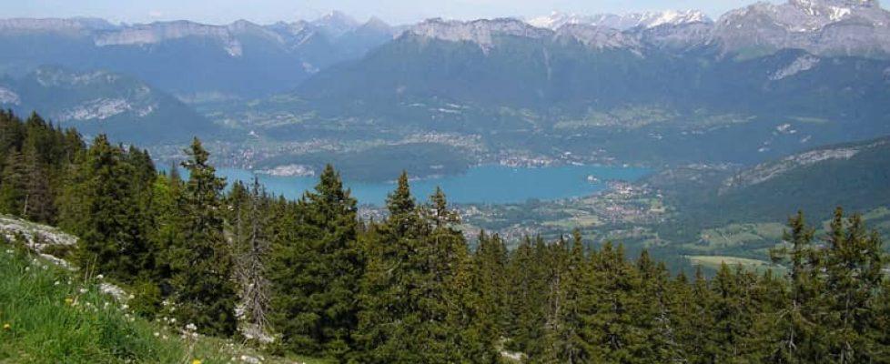 forêt du Semnoz (Haute-Savoie) (1)