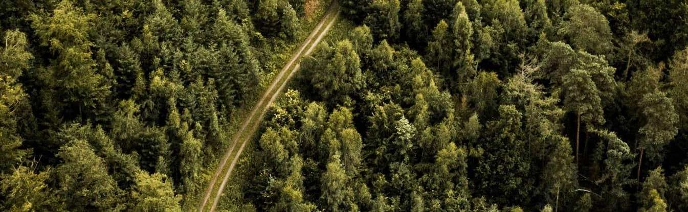 Exploitation Forestière en France les explications (1)